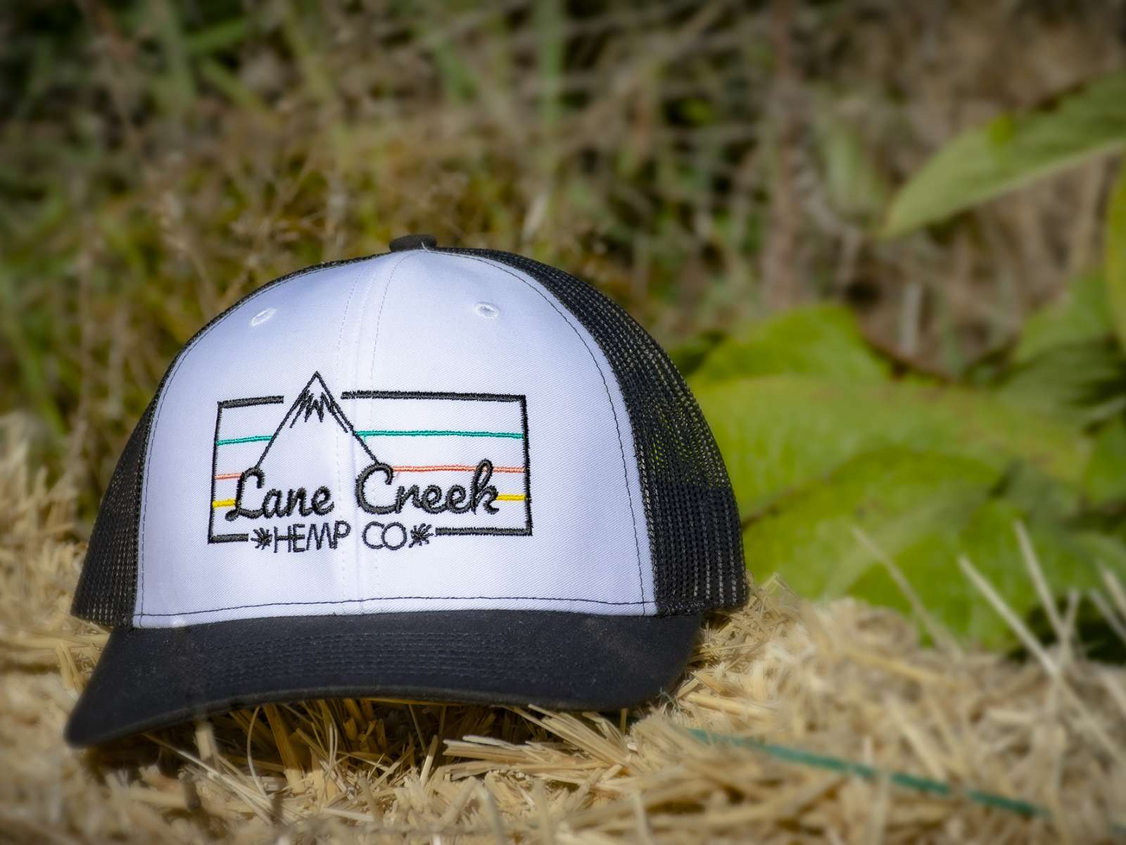 Lane Creek Hemp Co Rain Cloud Trucker Hat
